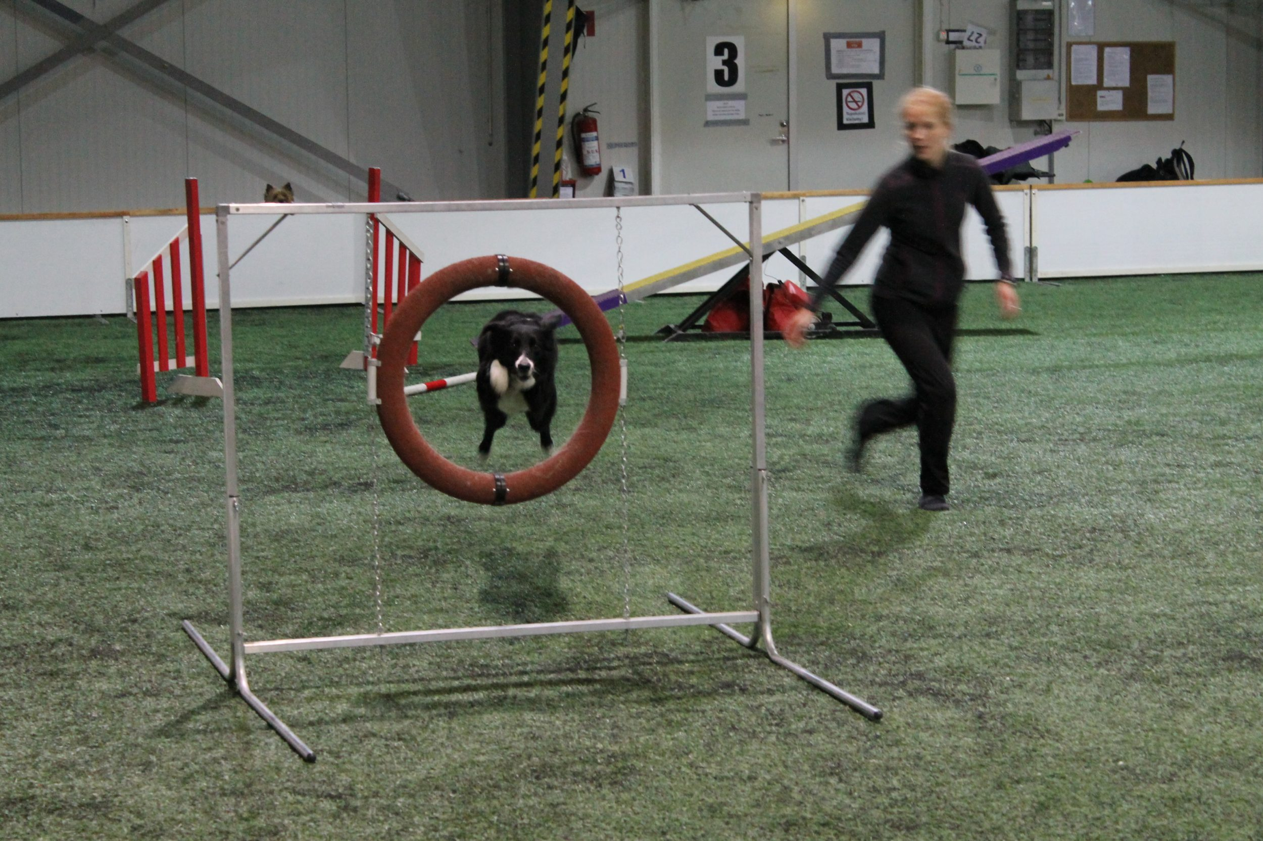 Hyppy, rengas ja keinu Ojanko Vantaa