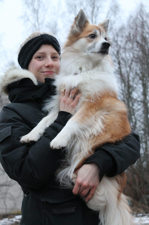 Yksilöllistä opetusta koirakoulussa Helsingissä