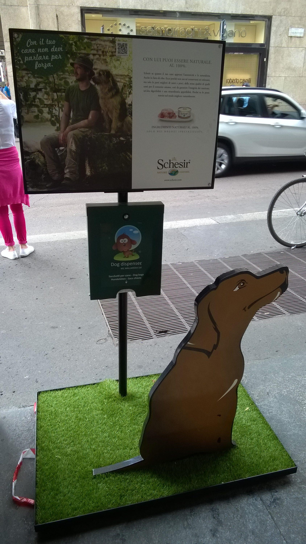 Koirakurssi Helsinki opettaa ohjaajia kouluttamaan koiriaan